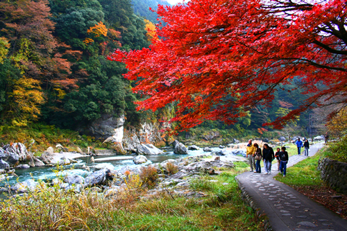 風光明媚な景観を楽しみながら気軽に散策できる人気のウォーキングスポット