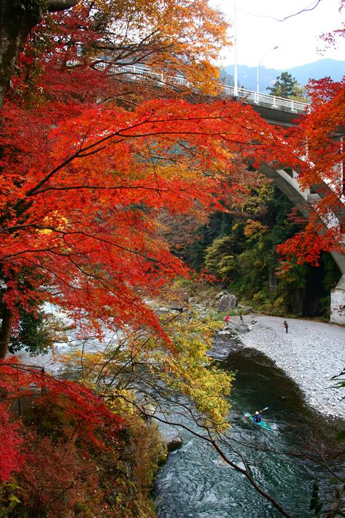 多摩川上流の御岳渓谷