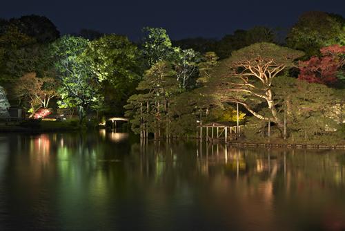 六義園 秋の夜に朱色や黄金色に色づく木々が浮かび上がる