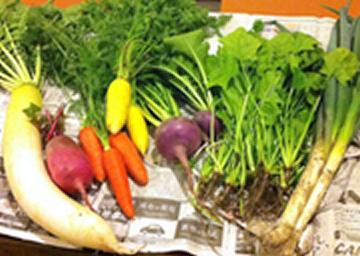 葉付き大根・赤大根などなど秋野菜の産直市も