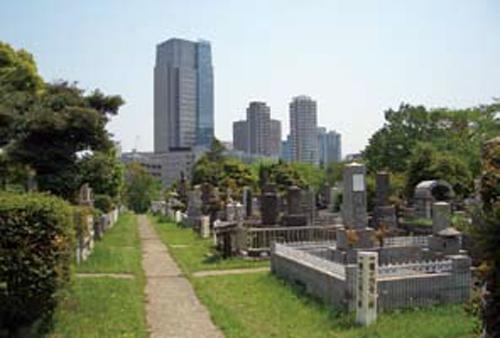 青山霊園 © 公益財団法人東京都公園協会