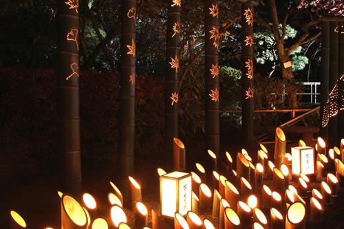 紅葉まつり期間中の竹灯籠 夜