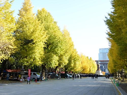 靖國神社参道の大鳥居から本殿まで約500mに渡って左右34本の黄金色のイチョウ並木道